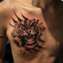 Big Tattoo Planet Tiger Chest Piece Big Tattoo Planet
